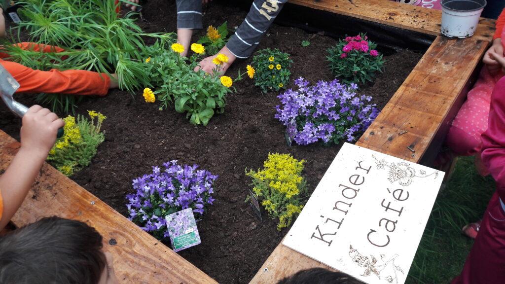 geflüchtete Kinder pflanzen Blumen